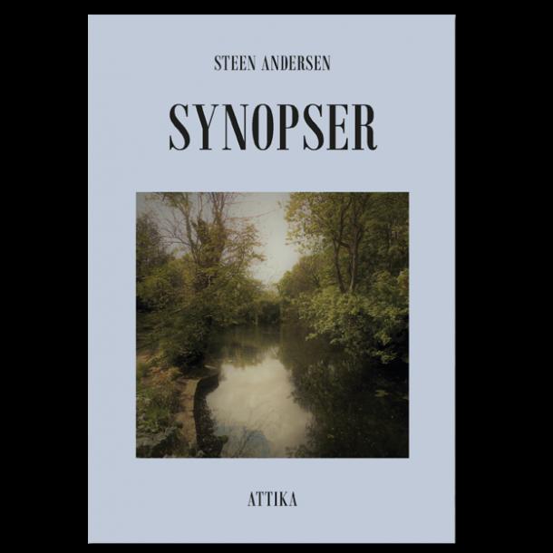 Steen Andersen: Synopser